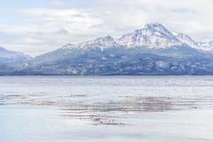 La montagna della neve ed il canale del cane da lepre in costa trascinano, Tierra del Fue fotografia stock