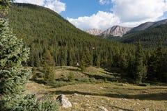 La montagna di indipendenza 12.703 piedi nella distanza sopra l'albero ha coperto le montagne Immagini Stock