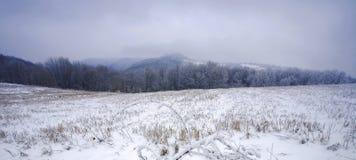 La montagna di Jelica fotografia stock