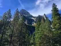 La montagna di Wellhorn da Gletscherschlucht Rosenlaui nell'interruttore fotografia stock