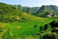 La montagna ed il terrazzo abbelliscono nel giorno di estate soleggiato Immagini Stock Libere da Diritti