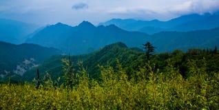La montagna Ridge di Qinling Immagine Stock