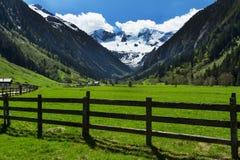 La montagna scenica con legno recinta Stilluptal Mayrhofen Austria Tirolo Immagini Stock Libere da Diritti