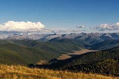 La montagna si appanna la valle della foresta del cielo Fotografia Stock