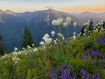 La montagne de granit chronomètrent au printemps image libre de droits
