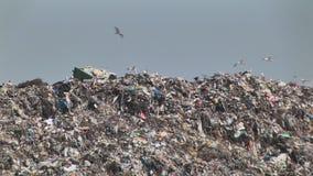 La montagne du plastique de déchets de déchets met des paquets en bouteille de nourriture de décomposition banque de vidéos