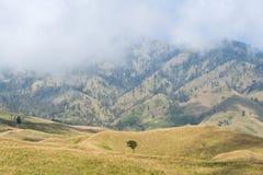 La montagne et la savane mettent en place avec le bas nuage au-dessus de la colline Montagne de Rinjani, île de Lombok, Indonésie Photographie stock