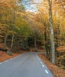 La montagne prend la couleur pendant l'automne Photo libre de droits