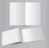 La moquerie de brochure se lève Illustration Stock