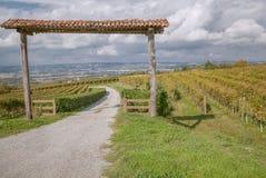 La Morra, Piedmont, Italien Arkivbild