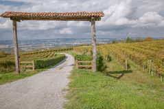 La Morra, Piedmont, Italy. Stock Photography