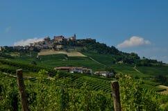 La morra, Piedmont, Italy. Vineyards stock image