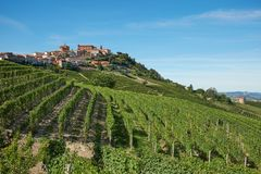 La Morra town in Piedmont, Langhe hills with vineyards in Italy. In a sunny day royalty free stock photo