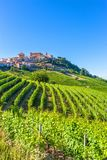 La Morra vineyards, located in Piedmont, Italy. La Morra vineyards,beautiful landscape, located in Piedmont, langhe district, north Italy royalty free stock photo
