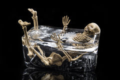 La mort dans le concept de glace, crâne en glace d'isolement Photo libre de droits