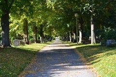 La mort de l'automne Image stock