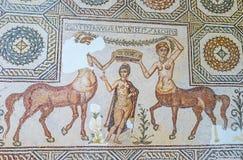 La mosaïque de Vénus Image stock