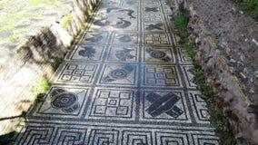 La mosaïque merveilleuse des provinces dans les ruines d'empire romain dans Ostia Antica banque de vidéos