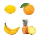La mosaïque porte des fruits citron, ananas d'orange de banane Photos libres de droits