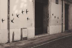 La mosca libera Fotografia Stock Libera da Diritti