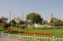 La moschea blu Immagine Stock