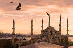 La moschea blu, Costantinopoli, Turchia. Fotografia Stock Libera da Diritti