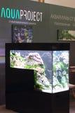 La mostra della cucitura moderna di Aqua Terra di terrario e dell'acquario immagine stock libera da diritti