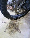 La moto roulent dedans le désert Photographie stock