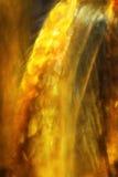 La mouche de grue partie dans un or, verticale, micrographe abstrait photos stock