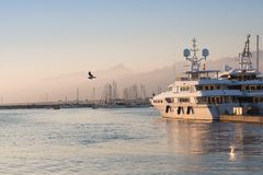 La mouette volant au-dessus de la mer dans le port Photos libres de droits