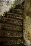La mousse a couvert de vieux escaliers concrets s'enroulant  Photo stock