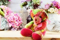 La muñeca y la vela lindas del peluche se encienden con el ramo de la flor Imagen de archivo