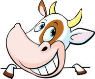 La mucca divertente dà una occhiata a fuori da dietro una superficie bianca - vettore Fotografia Stock