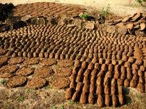 La mucca dung- il fertilizzante indiano Fotografie Stock