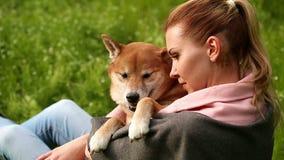 La muchacha abraza suavemente el perro Shiba Inu almacen de metraje de vídeo