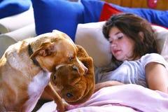 La muchacha adolescente en cama y el perro traen las zapatillas de deporte Imágenes de archivo libres de regalías