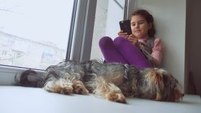 La muchacha adolescente jugando en línea al juego para el web del smartphone y del perro casero duerme sentándose en alféizar del Fotografía de archivo