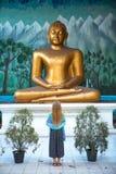 La muchacha adora al Buda Fotos de archivo