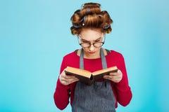 La muchacha agradable lee los vidrios que llevan del libro con los bigudíes en el pelo Fotos de archivo