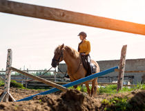 La muchacha alegre joven monta en un caballo marrón Entrenamiento del montar a caballo la niña está montando un caballo Imagenes de archivo