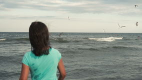 La muchacha alimenta gaviotas en la costa almacen de video