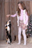 La muchacha alimenta su gato Fotos de archivo