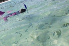 La muchacha asiática mira pescados mientras que bucea Fotos de archivo libres de regalías