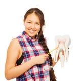 La muchacha asiática sonriente con el indicador y el diente modelan Foto de archivo