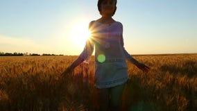 La muchacha atractiva joven está caminando a lo largo de un campo de trigo en un vestido blanco en un fondo de la puesta del sol metrajes