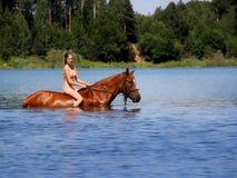 La muchacha baña el caballo en el lago Foto de archivo libre de regalías