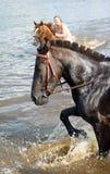 La muchacha baña el caballo en un río. Imágenes de archivo libres de regalías