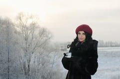 La muchacha bebe té en una mañana del invierno Fotografía de archivo libre de regalías