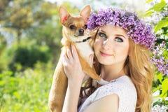 La muchacha bonita está sosteniendo su pequeño perro Fotos de archivo