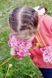 La muchacha bonita inhala el olor de una flor rosada grande Imagen de archivo